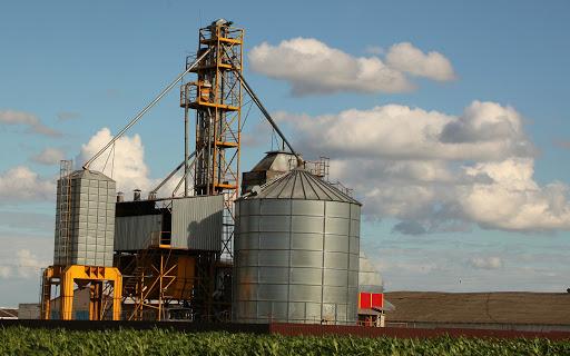 Історія зерносушильного ринку. Види та особливості конструкцій